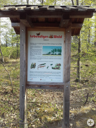 Waldinformationssystem