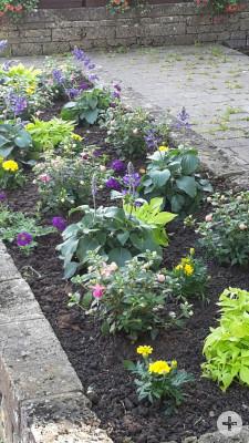 Blumenbeet Immenhausen