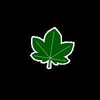 Logo ohne Hintergrund