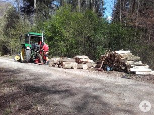 Polter-Holz