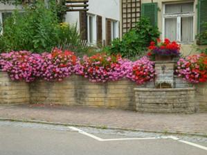 Brunnen mit Blumen