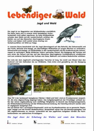 Jagd und Wald